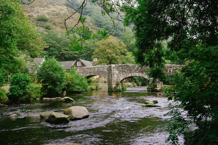 Dartmoor English Countryside Farm Tranquility Architecture Beauty In Nature Bridge Bridge - Man Made Structure Building Exterior Built Structure Connection Covered Bridge Day Footbridge Forest Growth Nature No People Outdoors Quiet Life River Tranquility Tree Water Watermill