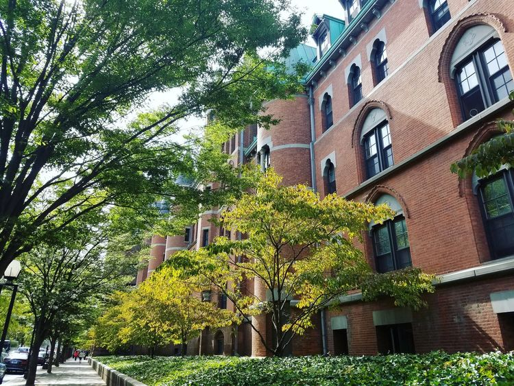 Architecture Building Exterior Tree City Yale University Eyeem Connecticut Connecticut Beautiful Autumn Autumn 2016 Lovely City Life Green Color Built Structure September Samsungphotography No People Architecture Adventure Trees Sky EyeEm Best Shots - Architecture Connecticut Sky Clouds And Sky Gorgeous