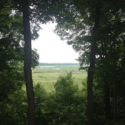 "View from our ""cabin"". Best view in the park. @LongPointEcoAdv"