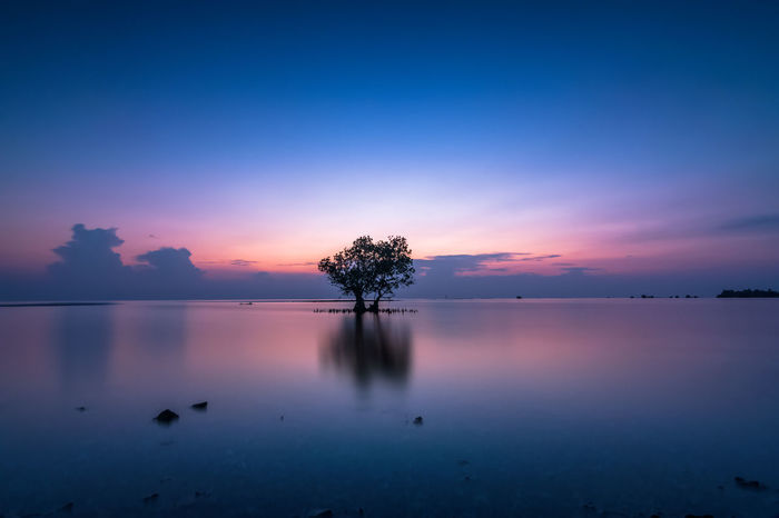 Blue Hours Serenity Amazing View Beach Beautiful Beauty In Nature INDONESIA Jakarta Landscape Landscape_Collection Landscape_photography Live For The Story Long Exposure Long Exposure Shot Mangrove Pari Island Sea,man Seascape Serenity Sunrise Sunrise_sunsets_aroundworld Super Long Exposure Thousand Island Tranquil Scene Tranquility Tropical Paradise Tropical, Your Ticket To Europe EyeEmNewHere Lost In The Landscape