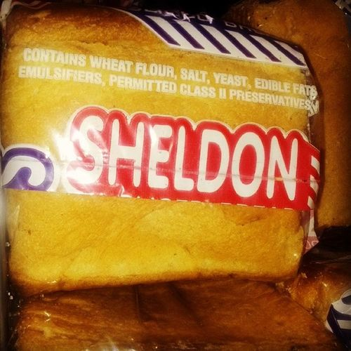 Now that's some Bread with high IQ! Bigbangtheory Drcooper