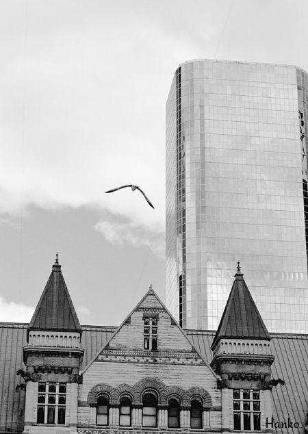 Blackandwhite Toronto Travel Architecture Buildings Metropolitan Old And New Architecture
