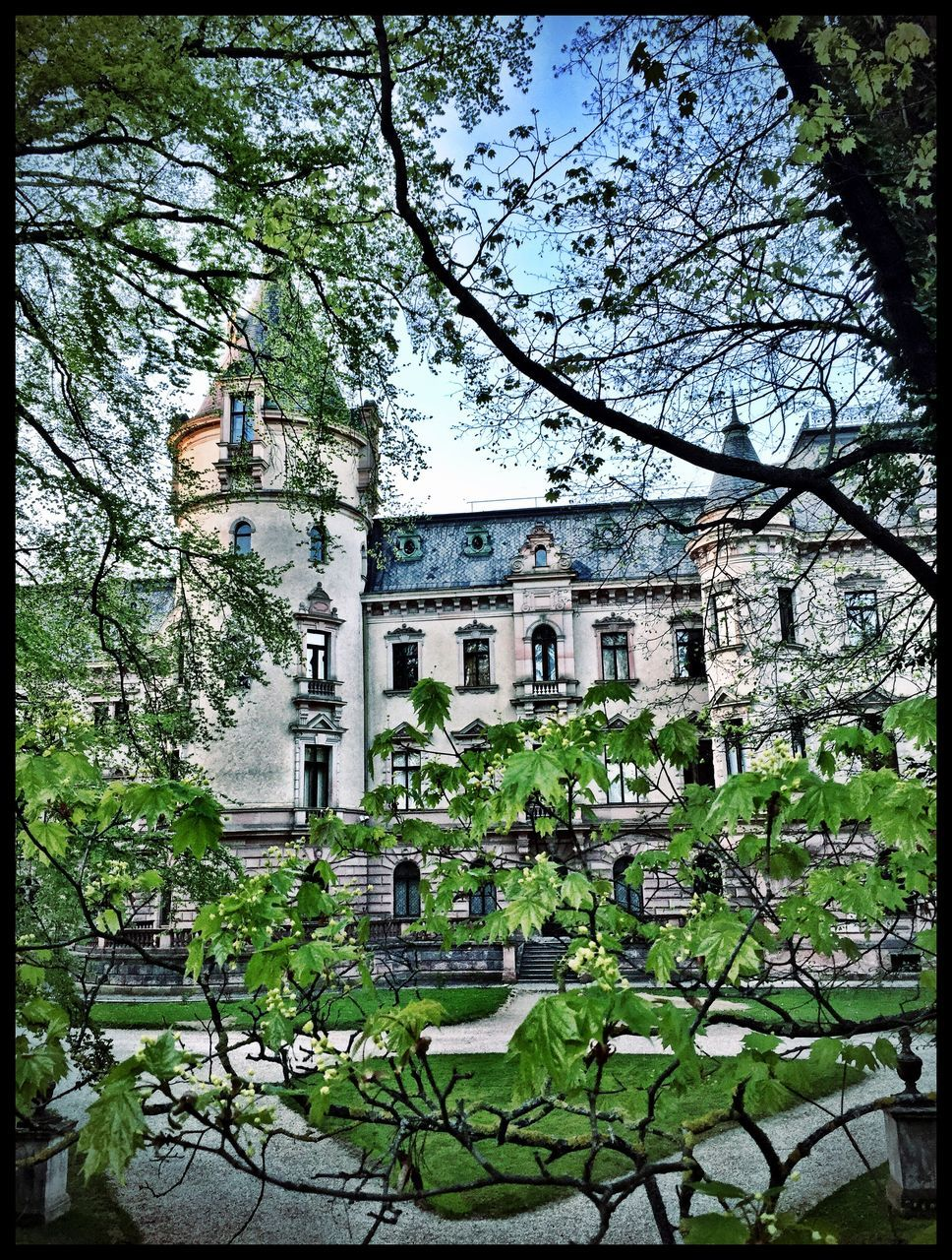 architecture, tree, building exterior, history, built structure, outdoors, no people, day, branch, city