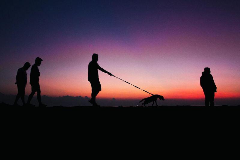 Silhouette men on field against orange sky