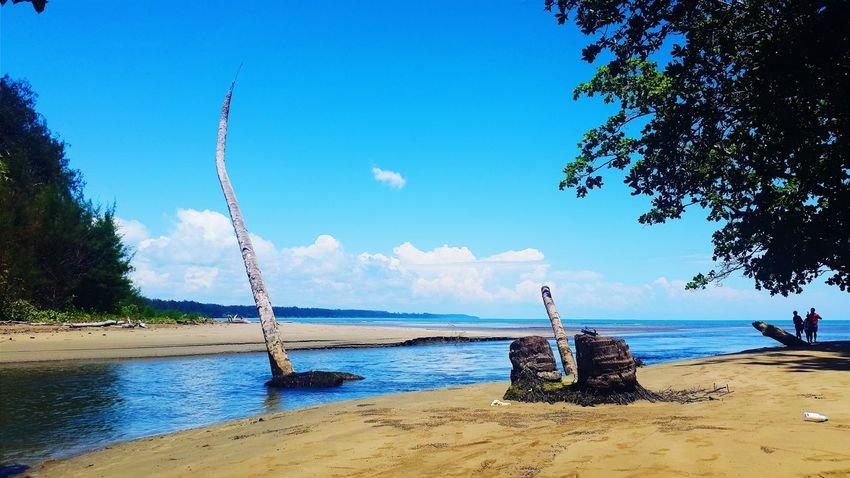 Tarvia Village, Demta Hello World Papuaisland Tarvia Demta Papua Sky And Sea Sea Photography VSCO Showcasemarch