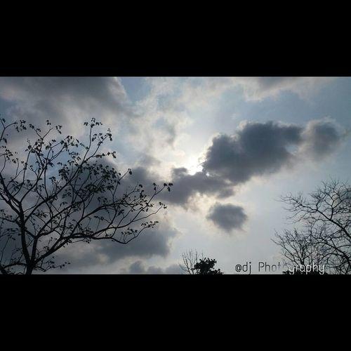 Mumbai MumbaiPuneExpressway Pune Trees Clouds And Sky First Eyeem Photo