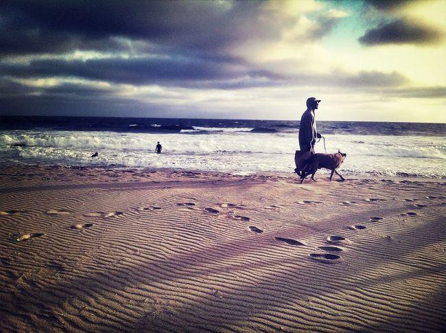 Strolling Along The Beach Venice Beach Man & Dog
