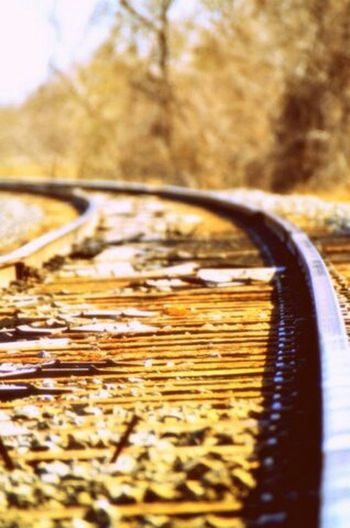 Never travel in a straight line Lomo Art Bokeh Traintracks Oklahoma Search F2.8 Rual