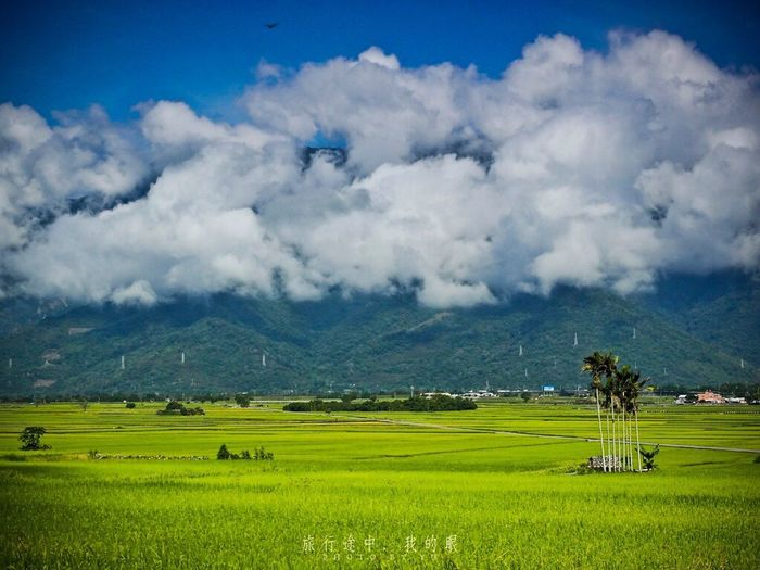 Landscape Cloud - Sky Scenics - Nature Environment Sky Field Tranquil Scene Beauty In Nature Green Color Land Plant Outdoors