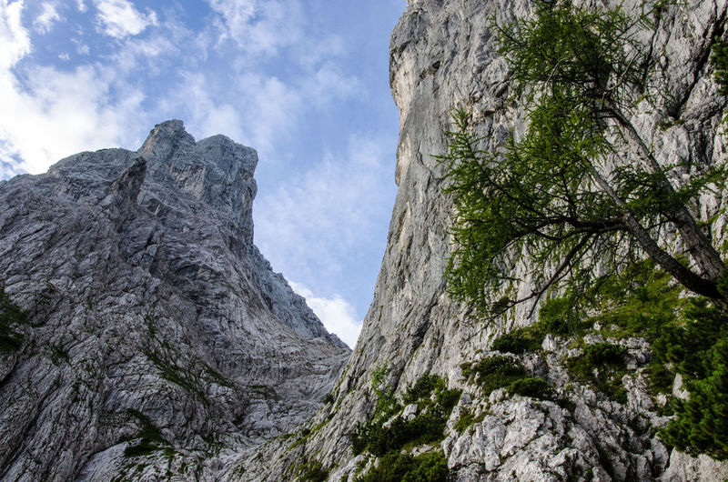 Nordkante Beauty In Nature Close-up Day Geology Low Angle View Mountain Mountaineering Nature No People Outdoors Predigtstuhl Quarry Ridge Rock Climbing Scenics Sky Tree Wilder Kaiser