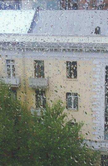 Rainy Tbilisi