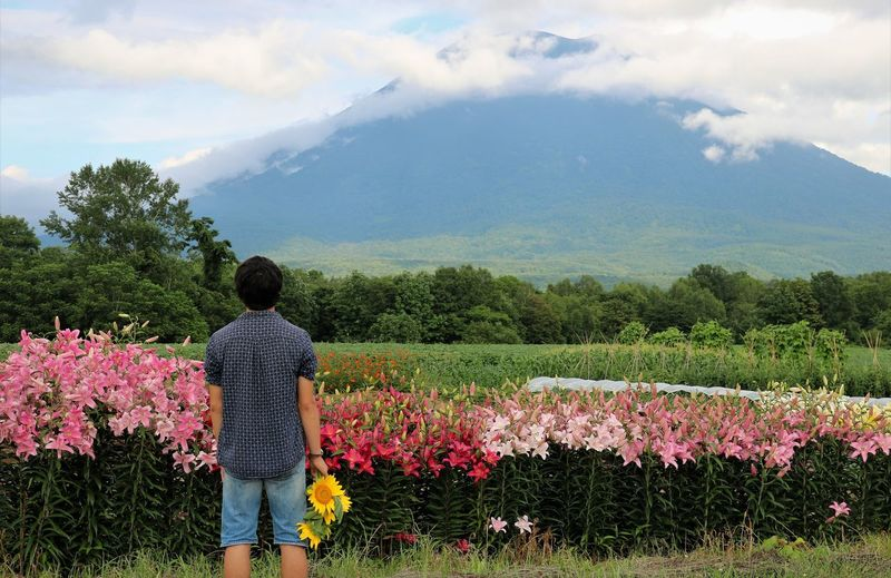 Admiring Mount Youtei Hokkaido Mount Yōtei Mountain View Mt. Youtei Rear View Sunflower Admiring Nature's Beauty Admiring The View Beauty In Nature Cloud - Sky Flower Flowerbed Flowering Plant Freshness Growth Lilies Mountain Nature One Person Plant Real People Rear View Scenics - Nature Sky Standing #urbanana: The Urban Playground Urban Fashion Jungle A New Beginning This Is Strength A New Perspective On Life Human Connection Moments Of Happiness 2018 In One Photograph Redefining Menswear My Best Photo 17.62° Moms & Dads