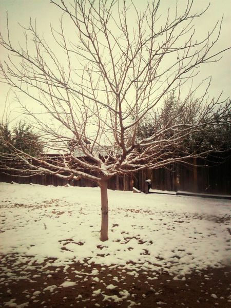 Fun Winter Snow Amazing Stunning