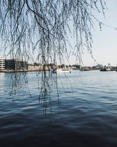 Water Tree Nature Reflection Bare Tree Outdoors Beauty In Nature Built Structure Building Exterior Day Lake No People Architecture Branch Transportation Moored Nautical Vessel Scenics Tranquility