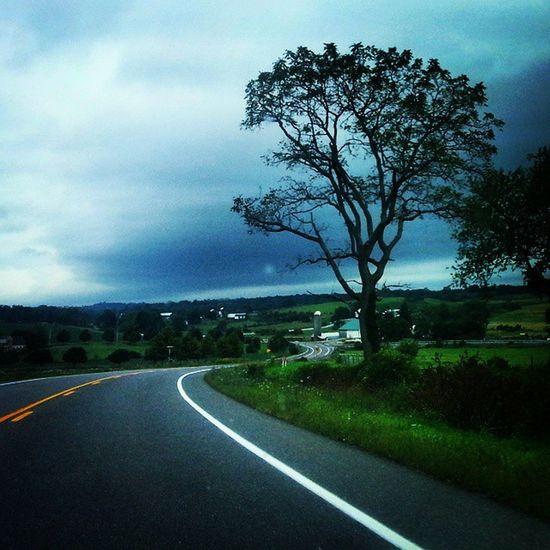 Winding country road Backroads Sharpturns Dusk Trees heavysky ruralamerica tusseymountain boalsburg farmland explorepa pennsylvania