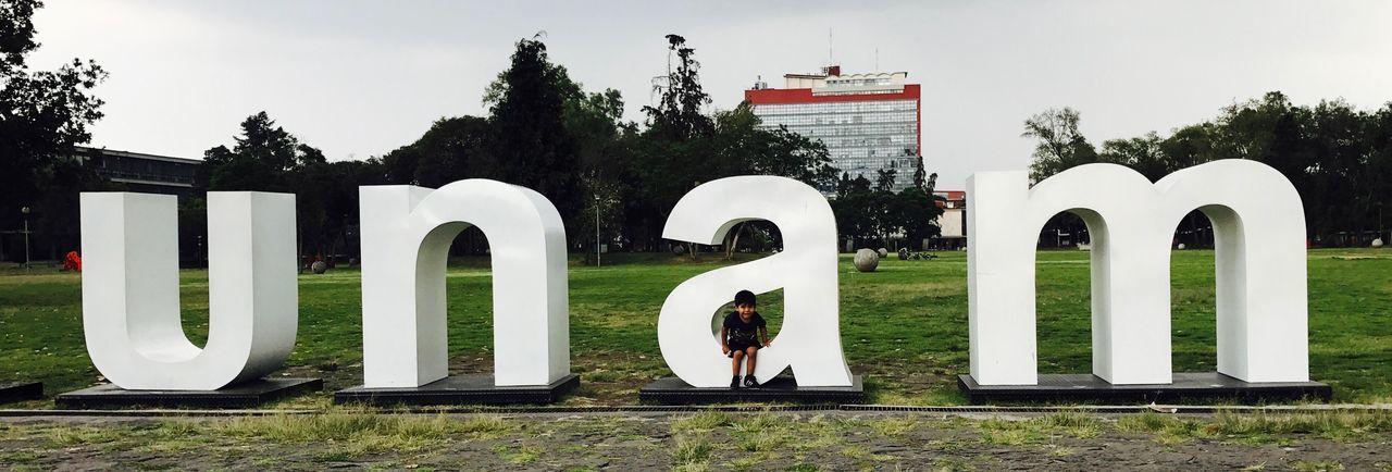 Desarrollo UNAM