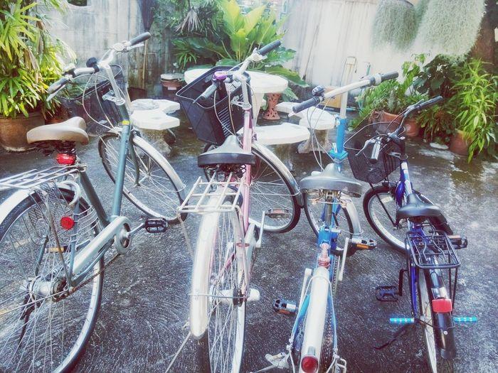 ไปปั่นจักรยานกันเถอะ :)