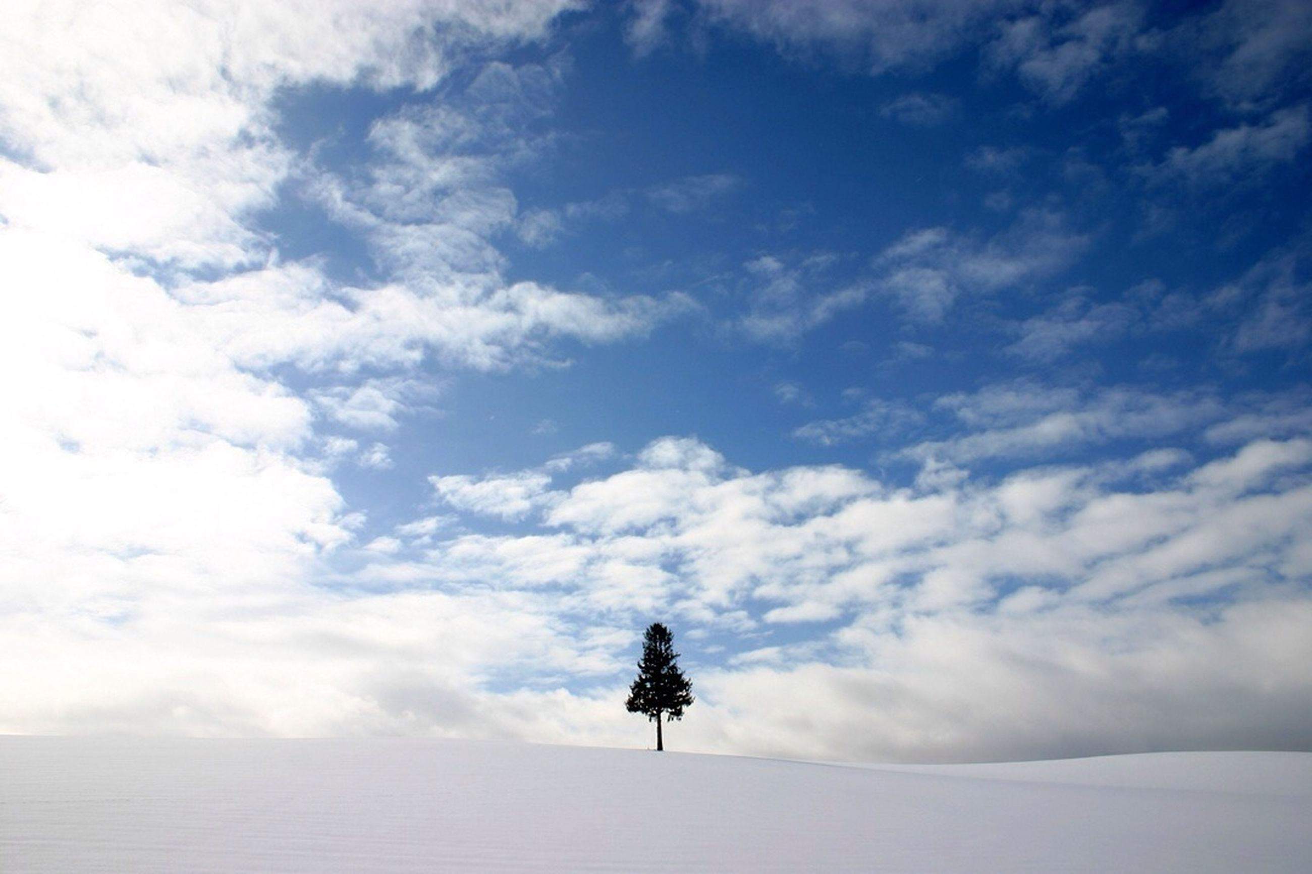 lifestyles, sky, leisure activity, full length, rear view, cloud - sky, men, weather, standing, tranquility, tranquil scene, snow, winter, scenics, cloudy, cold temperature, nature, beauty in nature