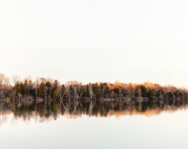 Float Autumn