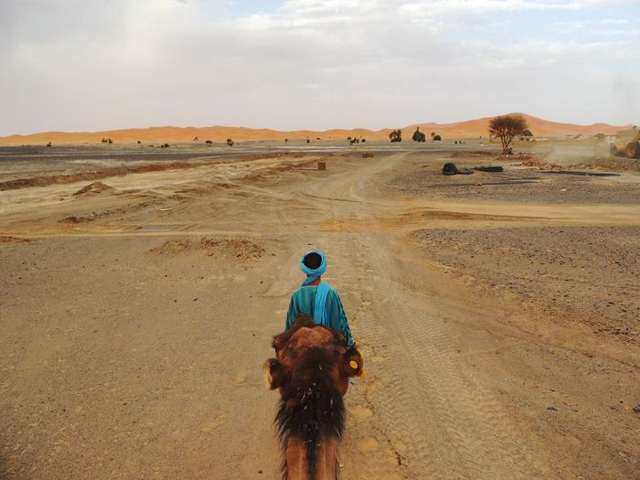 Rear view of man with camel on desert against sky