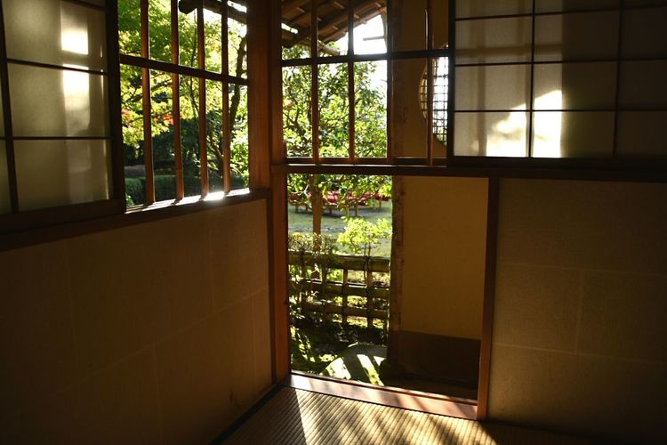 light and shadow. the Japanese classical tea room. Tearoom Japanese Tea Room Wabi-sabi Wabisabi Wabi Sabi Japan Photography Japanese Culture Japan Nikon Nikon D7200 Nikonphotography Light And Shadow Light And Darkness  光と影