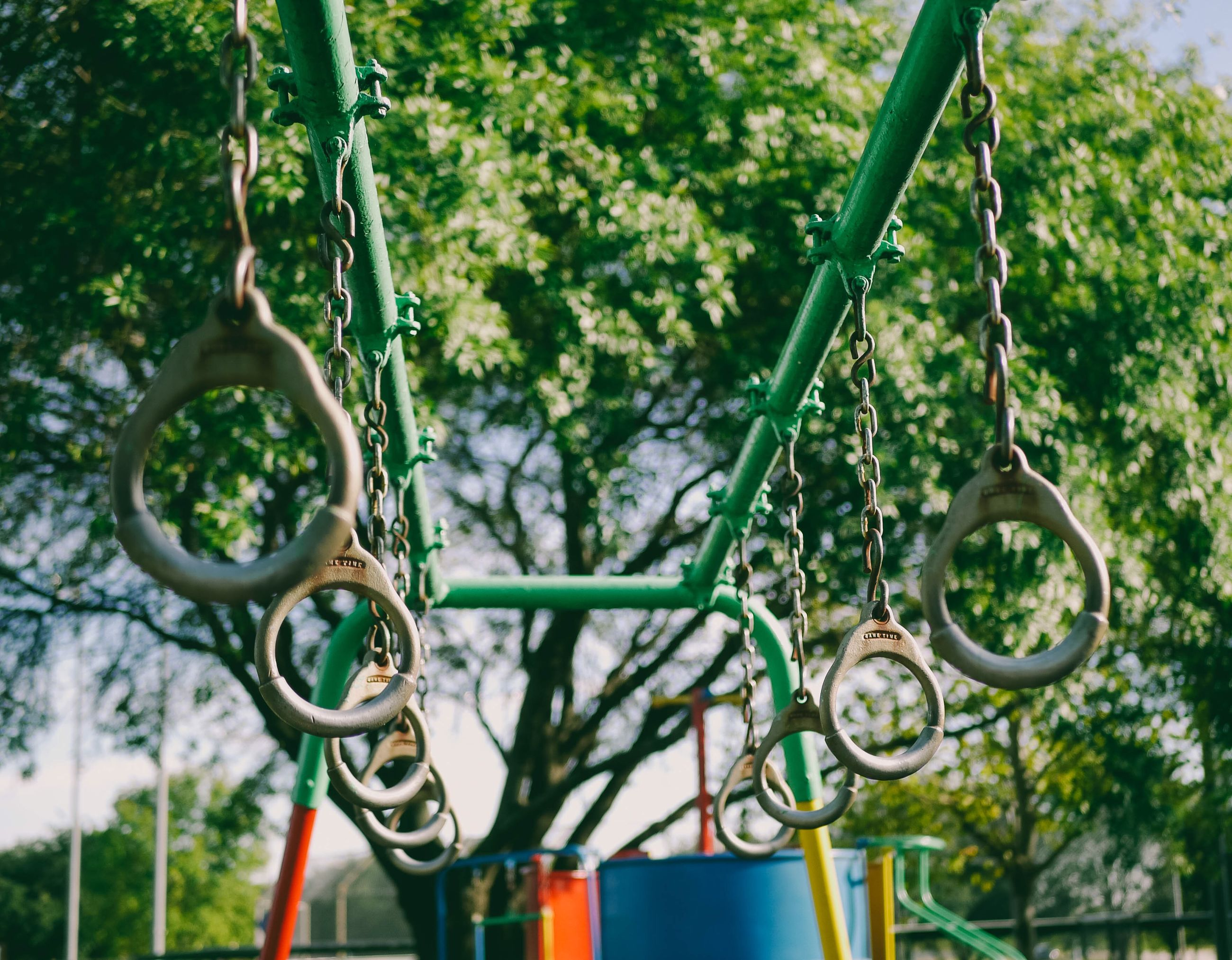 hanging, plant, no people, focus on foreground, metal, day, growth, playground, green color, nature, chain, close-up, outdoors, tree, swing, park, park - man made space, selective focus, low angle view, sunlight, outdoor play equipment