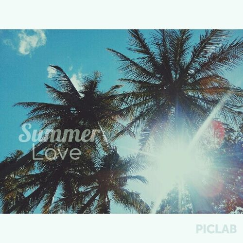 Summer🌞🌴 VSCO Summer ☀ Summerlove