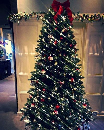 Christmas in sight at the Manor Christmas Christmasspirit Christmastree HolidaysAreComing Xmas Lauraashleythemanor Lauraashley