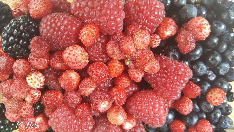 Eyem Nature Lover Fruits Berries Blueberries Rospberries Sttrawberries Organic Food Group Forest Natural Vegeterian Eating Diet Delicious Fruit Summer Sweet Yummy! Nofilternoedit Samsung Galaxy S6 Edge Nofilter