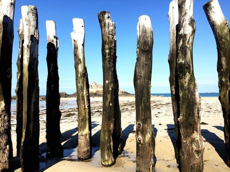 Miles Away Low Tide Wood Wood - Material Waterfront Waterline France