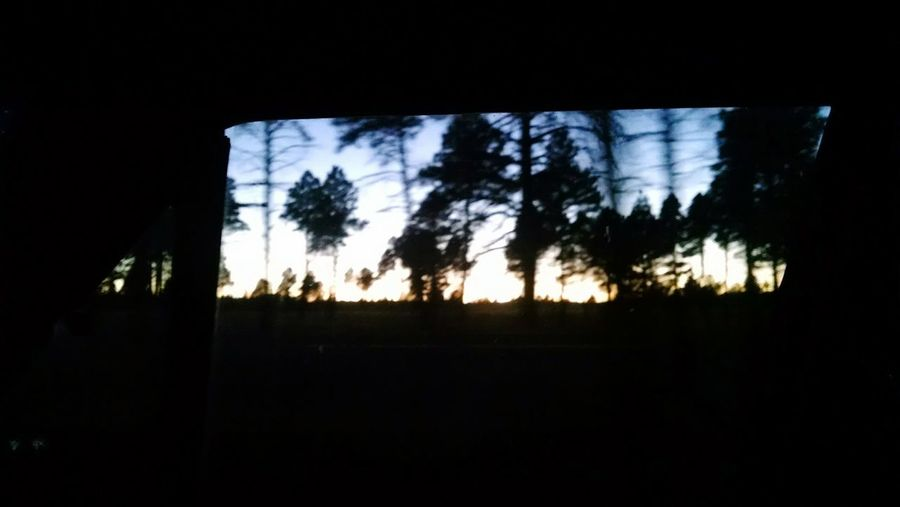 Through The Car Window