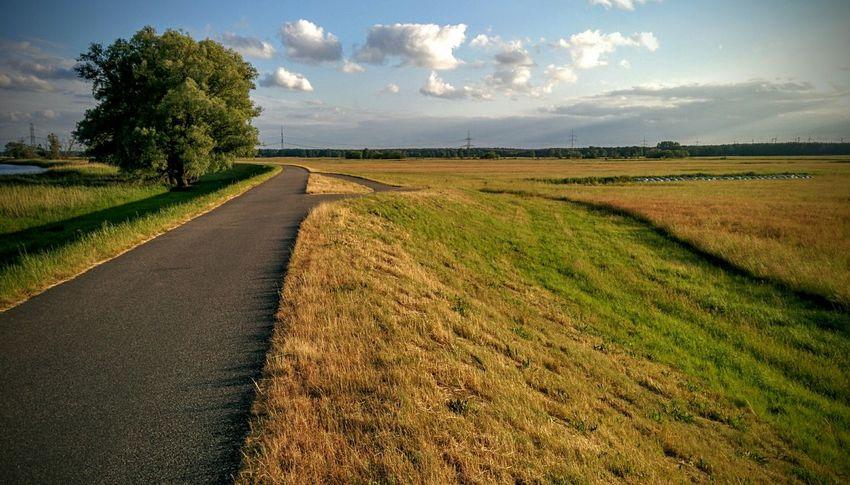 Bikepath Radweg Oder Neisse in Gartz, Germany Nexus5 Mobilephotography Nexus5 Nexus5photography Bikepath Germany