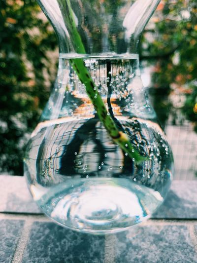 Close-up of water in glass vase