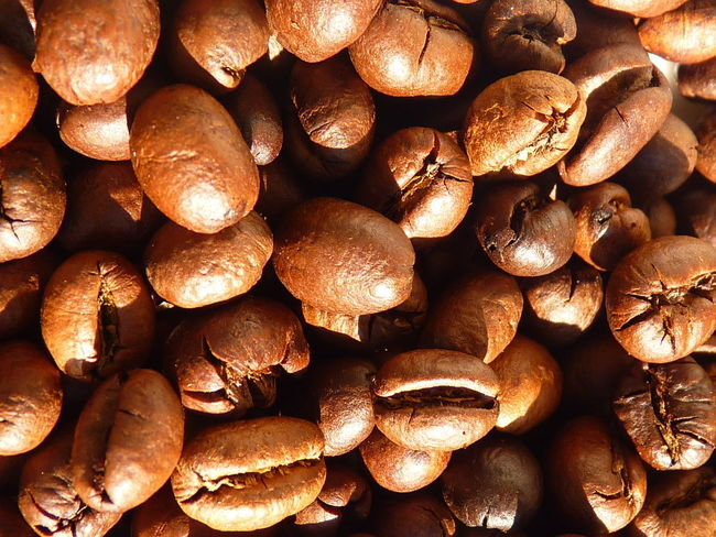 coffee cherry,coffee,Peaberry,caracoli Coffee Abundance Aleq Backgrounds Brown Caffeine Caracoli Close-up Coffee Coffee - Drink Coffee Cherry Detail Food Food And Drink Freshness Full Frame Healthy Eating Indoors  Large Group Of Objects No People Nut Nut - Food Peaberry Roasted Coffee Bean Still Life Wellbeing