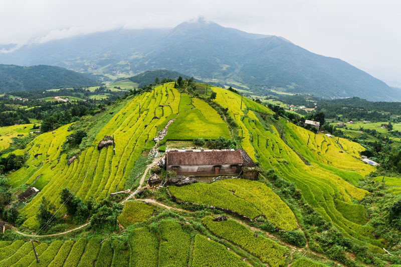 Mountain Scenics - Nature Green Color Environment Landscape Beauty In Nature Tranquil Scene Tranquility Mountain Range Plant Non-urban Scene No People Land Idyllic Nature Day Tree Rural Scene Sky Agriculture Outdoors Rolling Landscape Terraces