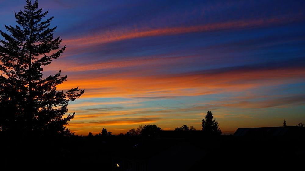 Colors Awsome Awsome Suset Germany Goldencolor Picoftheday Shillouette Skycolors Sunrise Sunset Tagsforlikes
