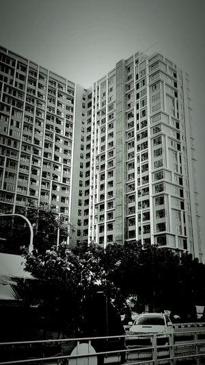 Taking Photos. . B&W, monocrome, shillouette architecture.