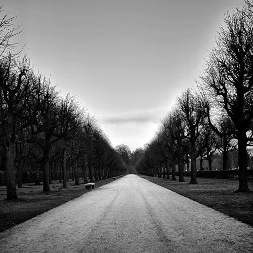 Tree The Way Forward Treelined Bare Tree Sky Outdoors No People Nature Day Tranquility Tranquil Scene Scenics Beauty In Nature Monochrome Photography Blackandwhite Photography IPhoneography IMography Berlin Photography Berlin Berlin Charlottenburg  Be. Ready.