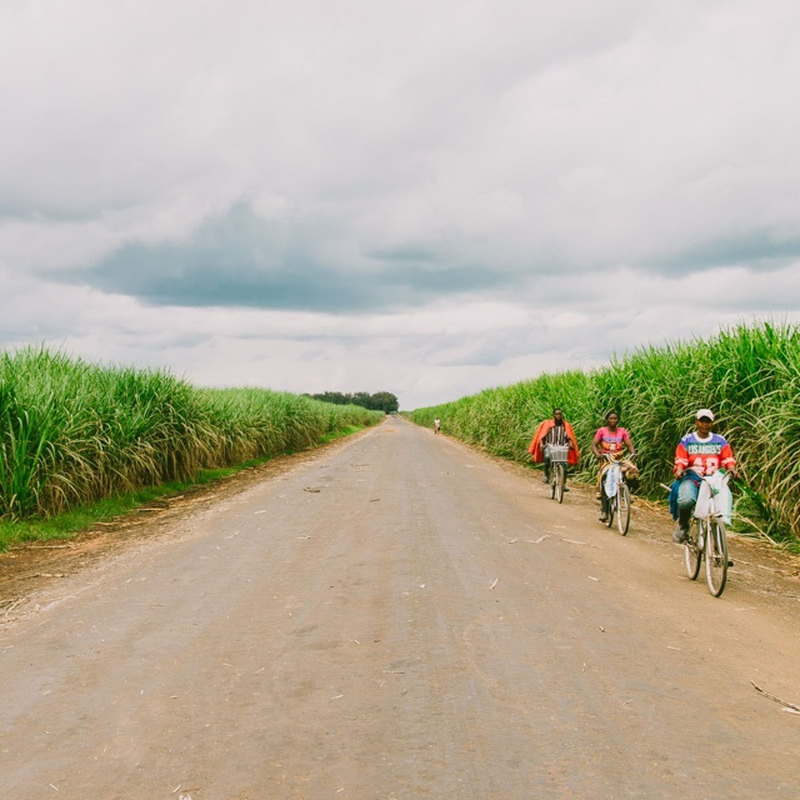 sky, the way forward, transportation, cloud - sky, road, men, lifestyles, cloudy, diminishing perspective, vanishing point, leisure activity, cloud, rear view, bicycle, dirt road, land vehicle, full length, walking, country road