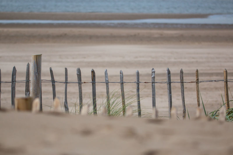 All In A Row Grass Beach Beauty In Nature Close-up Coast Coastal Defences Day Fence Nature No People Outdoors Protection Safety Sand Scenics Sea Selective Focus Wire Wood - Material Wooden Post Perspectives On Nature