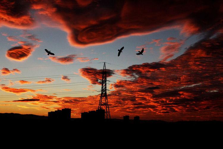 Cloud Red Sky, Sillouette Mountains,, Phenomeon Sky Skyscraper Sunrise Sunset Sunset,sunrise,sun First Eyeem Photo