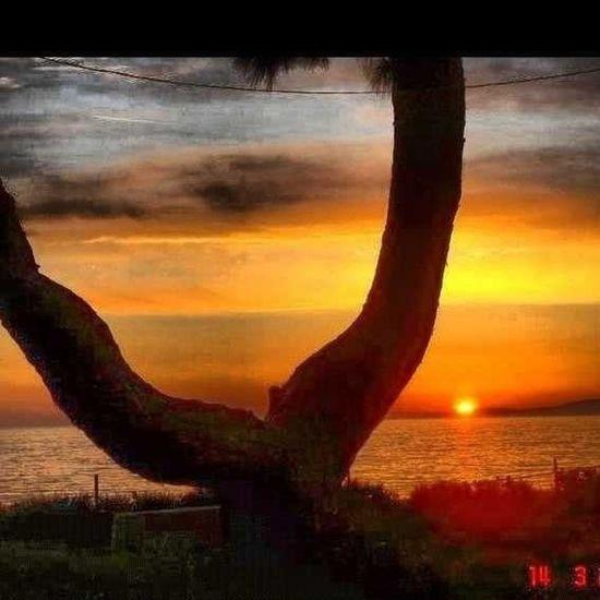 Sunset Izmir Gümüldür Gertur Sitesi Sun Light