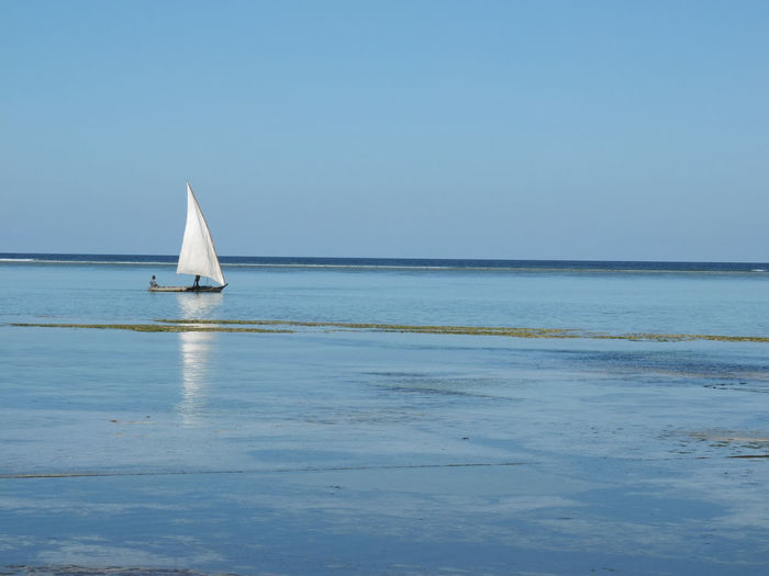 Boat sailing in sea
