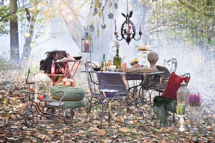 Chairs and table against trees during autumn