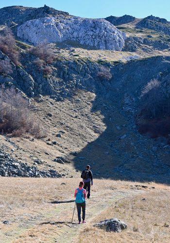 Rear view of friends walking on mountain