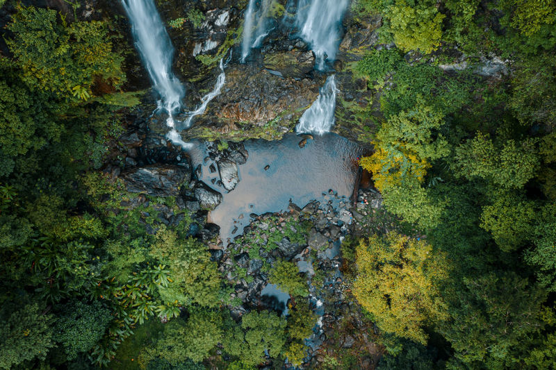 High angle view of water flowing through rocks in forest