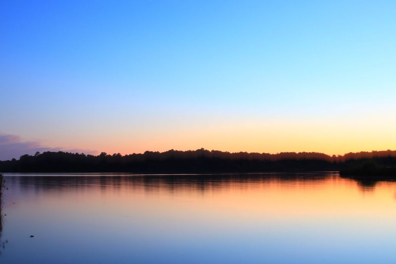 Sunset in Raleigh Sky Water Lake Scenics - Nature Tranquility Tranquil Scene Beauty In Nature Clear Sky Copy Space Waterfront Non-urban Scene Reflection Tree Nature No People Sunset Idyllic Blue Plant Outdoors