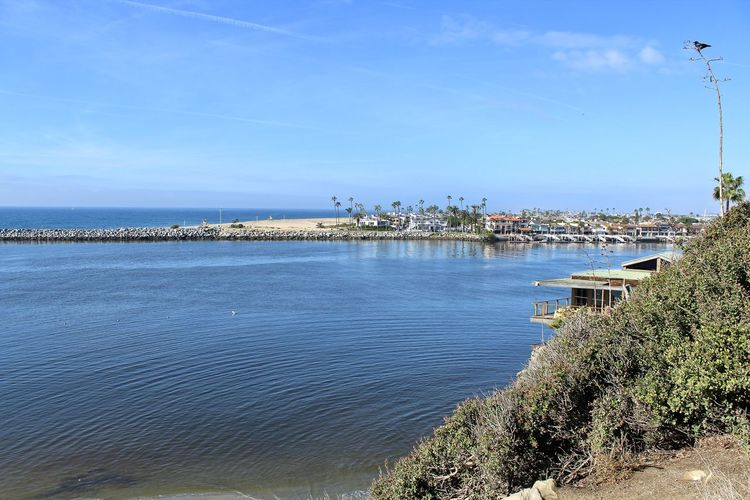 Balboa Peninsula showing homes and ocean in Newport Beach Newport Beach Architecture Balboa Peninsula Beauty In Nature Blue Building Exterior Built Structure Cloud - Sky Day Horizon Nature No People Outdoors Plant Scenics - Nature Sea Sky Tranquil Scene Tranquility Tree Water