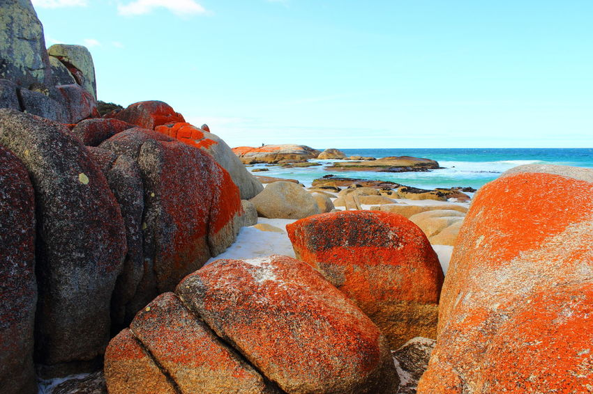Australia Australian Landscape Bay Of Fire Bay Of Fires Beach Beauty In Nature Beauty In Nature Coast Day Horizon Over Water Nature Nature No People Ocean Outdoors Rock - Object Scenics Sea Sky Tasmania TasmaniaAustralia Water Been There.