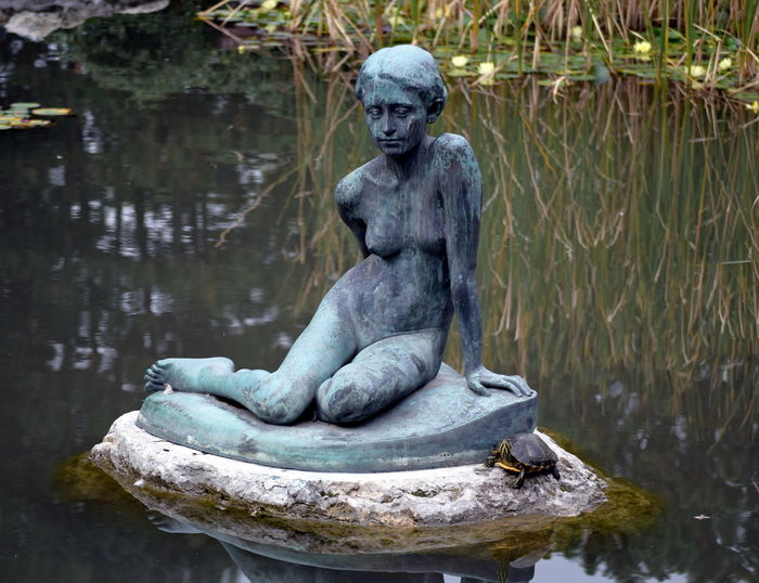 Budapest Lake Margaret Island Outdoors Reflection Rock - Object Statue Tranquil Scene Tranquility Turtle Water